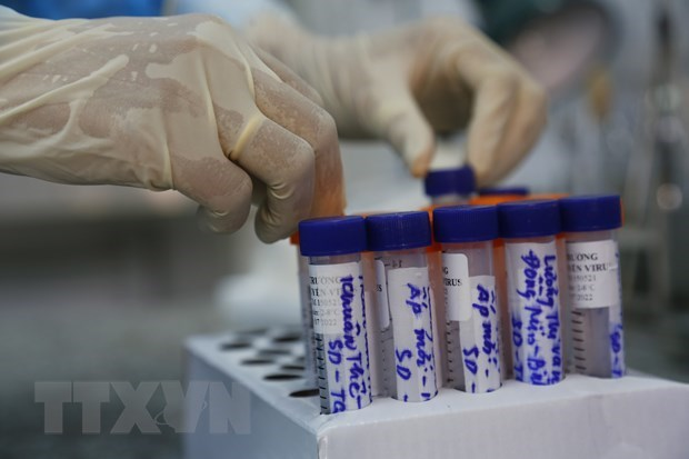 COVID-19: Registra Vietnam 62 nuevos casos hinh anh 1
