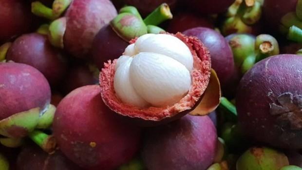 Vietnam apunta a ingresar 41 mil millones de dolares por exportaciones agricolas en 2021 hinh anh 1