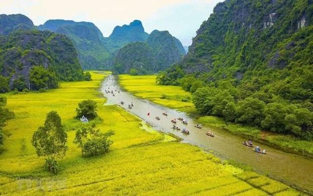 Vietnam necesita nuevos mecanismos para promover el desarrollo cultural hinh anh 1