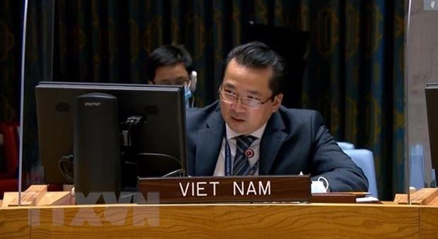 Vietnam apoya la salida de combatientes extranjeros y mercenarios de Libia hinh anh 1