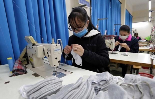 Requieren politicas de apoyo para grandes empresas vietnamitas en medio del COVID-19 hinh anh 1