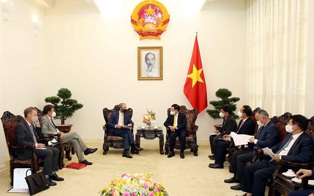 Reiteran disposicion de Vietnam de favorecer inversiones britanicas hinh anh 1