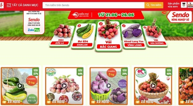 Venden productos agricolas vietnamitas en plataforma de e-comercio Sendo hinh anh 1