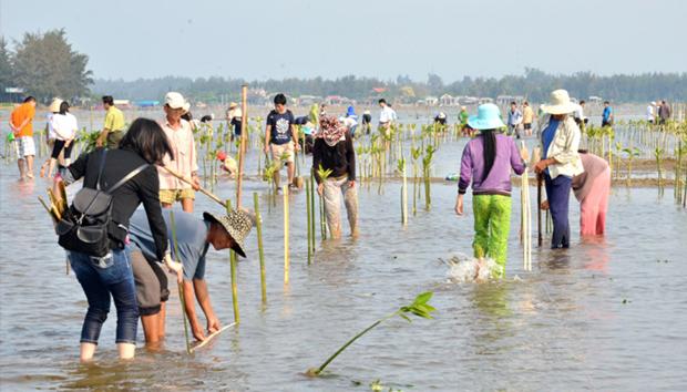 Destacan a prefectura nipona por aportes a conservacion del entorno en Vietnam hinh anh 1
