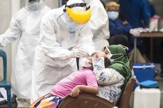 Indonesia reporta mayor pico diario de casos del COVID-19 hinh anh 1