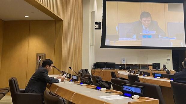 Vietnam insta a cumplir plenamente Convencion maritima de la ONU hinh anh 1