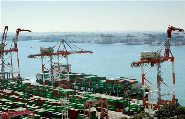 Japon ratifica Tratado de Asociacion Economica Integral Regional hinh anh 1