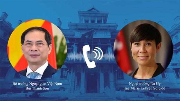 Vietnam y Noruega buscan agilizar coordinacion en actividades de CSNU hinh anh 1