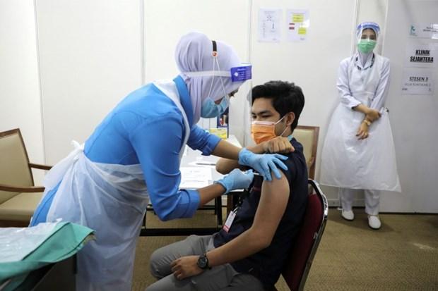 Malasia considera permitir la reanudacion de las empresas vacunadas hinh anh 1