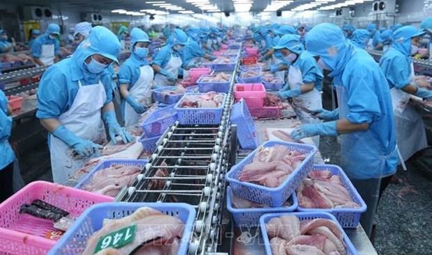 Anuncia EE.UU. resultados de revision antidumping a pescados vietnamitas hinh anh 1