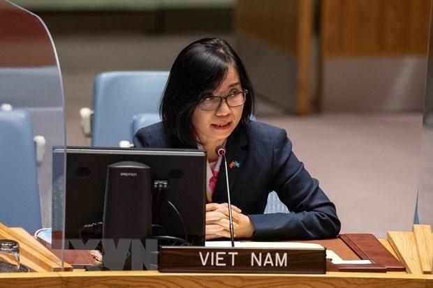 Vietnam apoya lucha contra la proliferacion de armas nucleares hinh anh 1