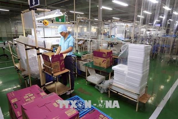 Inversion extranjera en provincia vietnamita de Dong Nai supera el plan anual hinh anh 2