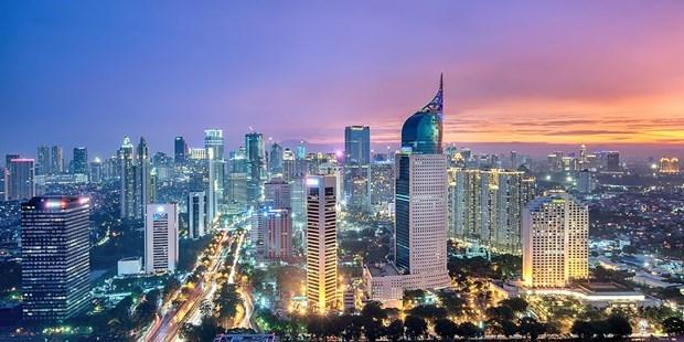 Indonesia busca desarrollar parques industriales hinh anh 1