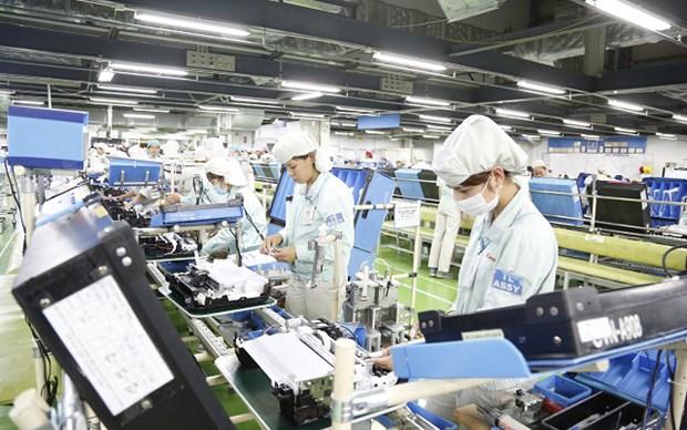 Vietnam registra un record de nuevas empresas en el primer semestre de 2021 hinh anh 1