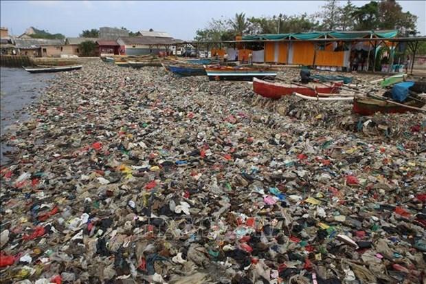 Iniciativas para combatir la contaminacion del mar por plasticos en la ASEAN hinh anh 1