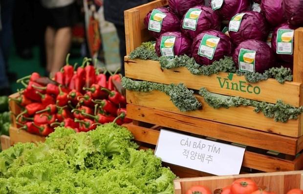 Celebran Semana de Productos Agricolas de Vietnam hinh anh 1