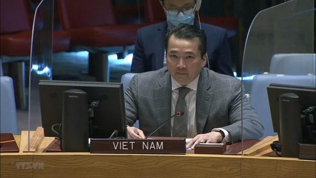 Insta Vietnam a estabilizar situacion en la Republica Democratica del Congo hinh anh 1