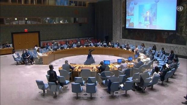 Vietnam llama a garantizar proteccion de civiles en Colombia hinh anh 1