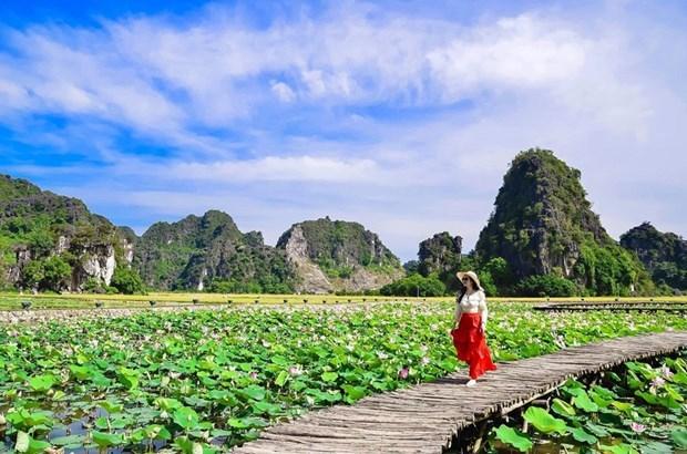 Vietnam tiene potencialidades para desarrollar el turismo rural hinh anh 1