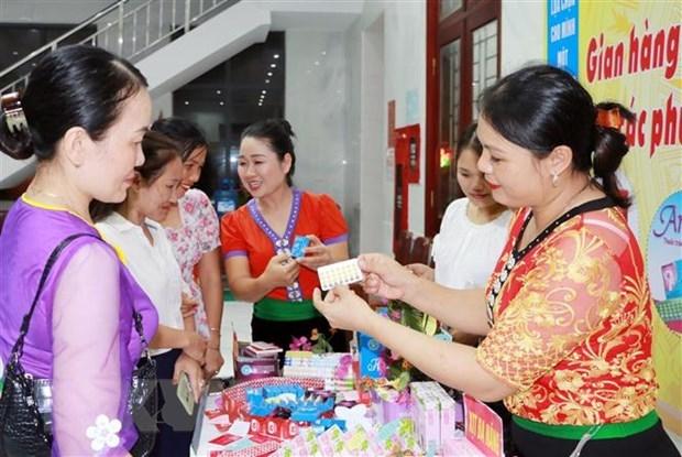 Promueven igualdad de genero en sistema de bienestar y seguro social en Vietnam hinh anh 1