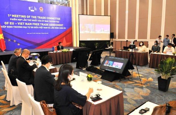 Revisan implementacion de TLC entre Vietnam y la Union Europea hinh anh 1