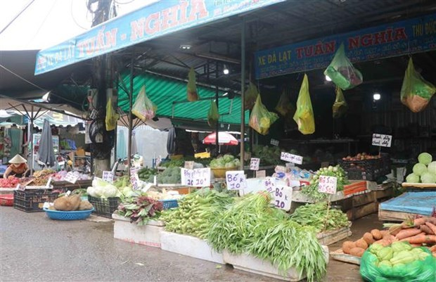 Reabriran mercados tradicionales en Ciudad Ho Chi Minh para suministro de productos esenciales hinh anh 1
