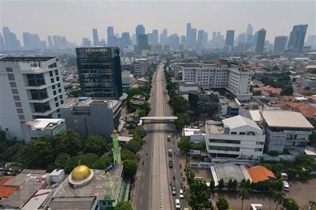 Fitch rebaja a 4,8 por ciento la prediccion de crecimiento de Indonesia hinh anh 1