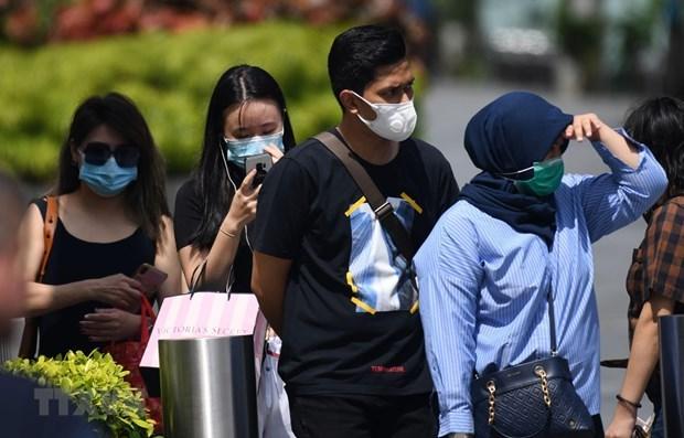 Vietnam por proteger a sus ciudadanos en Singapur durante pandemia hinh anh 1