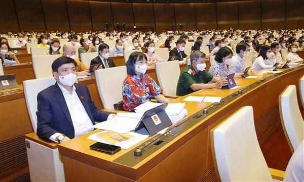 Gobierno de Vietnam se centra en lucha antiepidemica en los meses restantes del ano hinh anh 1