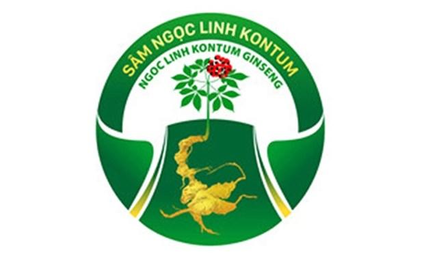Certifican marca de productos agricolas y medicinales de provincia vietnamita hinh anh 1