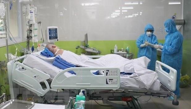 Ciudad Ho Chi Minh se centra en reducir la mortalidad por el COVID-19 hinh anh 1