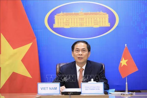 Sector diplomatico de Vietnam trabaja por contribuir al cumplimiento de doble objetivo nacional hinh anh 1