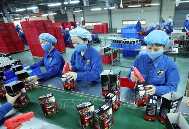EVFTA, catalizador para desarrollo de empresas vietnamitas hinh anh 2