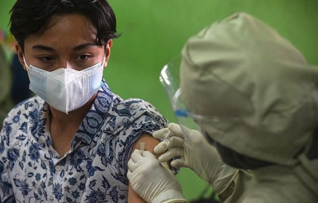 Variante Delta del virus SARS-CoV-2 se extiende en casi toda Indonesia hinh anh 1