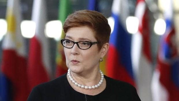 ASEAN, centro de politica de Australia sobre Indo-Pacifico hinh anh 1
