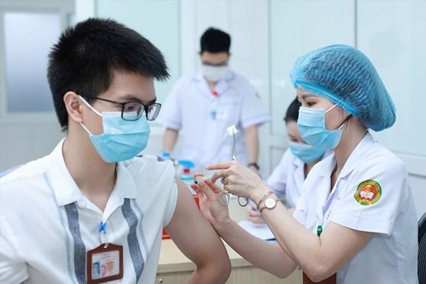 Consultan a la OMS y expertos extranjeros en investigacion clinica para desarrollo de vacunas en Vietnam hinh anh 2