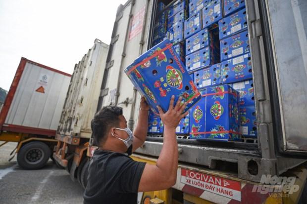 Robustecen Vietnam y China cooperacion en agricultura y consumo de frutas hinh anh 1