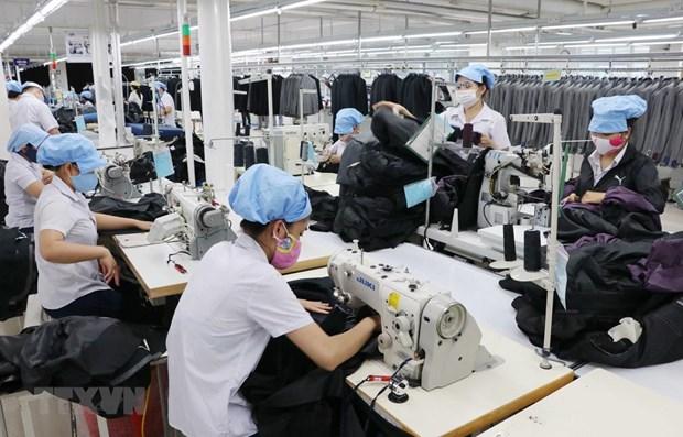 Exportaciones vietnamitas se benefician de Tratados de Libre Comercio hinh anh 1