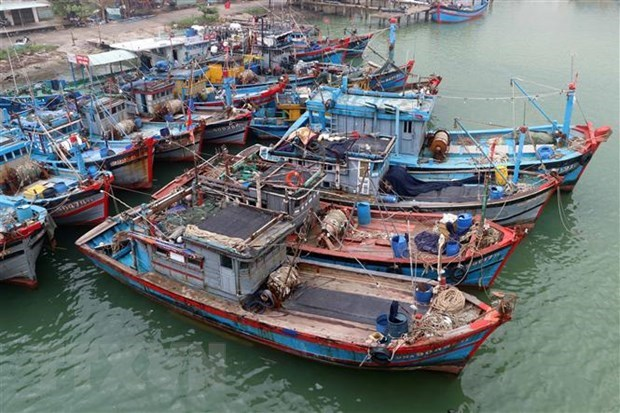 Ejercicio militar de China en Hoang Sa viola soberania de Vietnam, dice portavoz hinh anh 1
