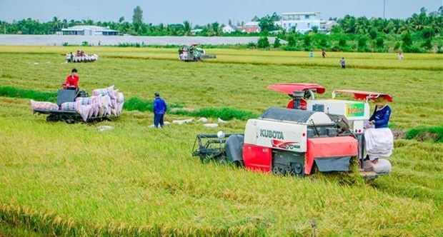 Australia respalda agricultura de alta tecnologia en Vietnam hinh anh 1