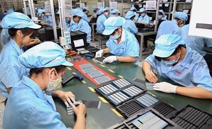 Maxima proteccion de derechos de trabajadores y empleadores vietnamitas en medio del COVID-19 hinh anh 1
