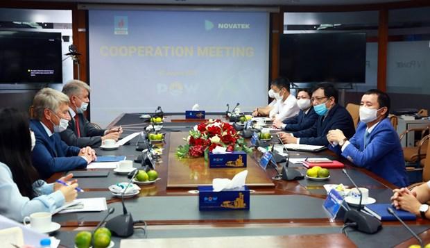 Promueven grupos vietnamita y ruso cooperacion energetica hinh anh 1
