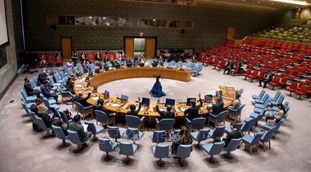 Condena Vietnam el uso de armas quimicas hinh anh 1