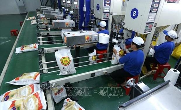 Exportaciones arroceras de Vietnam muestran buenas senales hinh anh 1