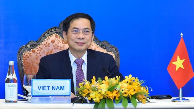 Vietnam participa en la XIV Conferencia Ministerial de Cooperacion Mekong-Japon hinh anh 1
