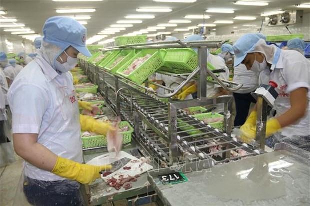 En alza exportaciones de provincia vietnamita Tien Giang entre enero y julio hinh anh 1