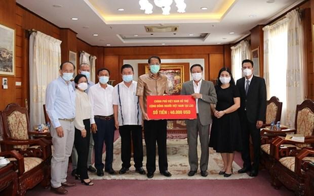 Apoyan a comunidad vietnamita en Laos en combate contra COVID-19 hinh anh 1