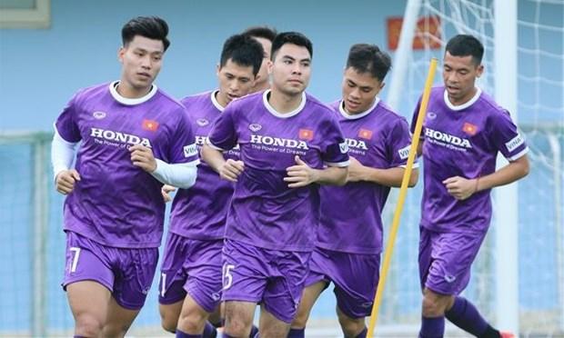 Vietnam trabaja por metas concretas hacia el Mundial de futbol 2022 hinh anh 1