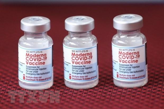 Vietnamitas en EE.UU. proponen enviar vacuna contra el COVID-19 a Ciudad Ho Chi Minh hinh anh 1