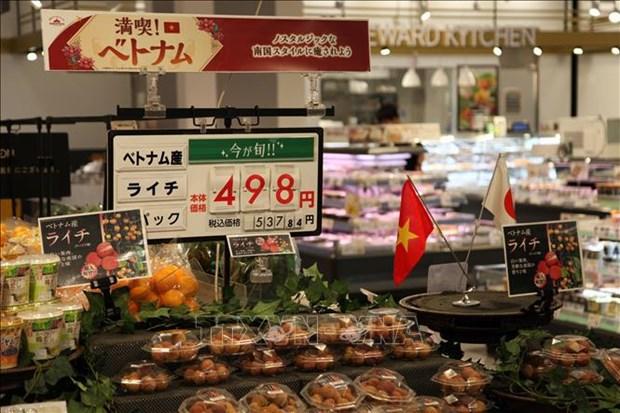 Intensifican cooperacion economica entre Vietnam y prefectura japonesa hinh anh 1